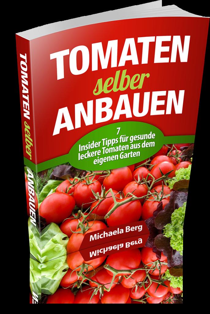 Tomaten_selber_anbauen_00