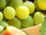 cropped-assorted-fruits-page-header.jpg